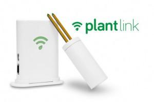PlantLink-537x357