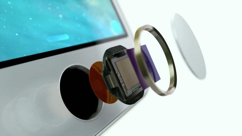 iPhone 7 sensor