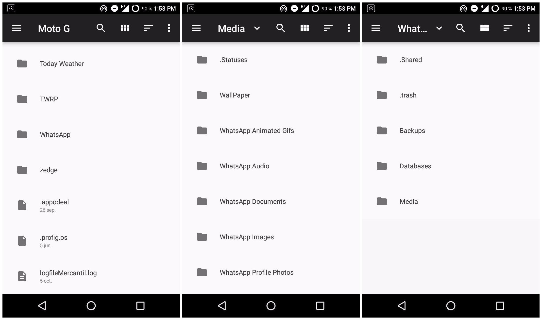 borra media android whatsapp